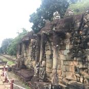 elephant terrace 5
